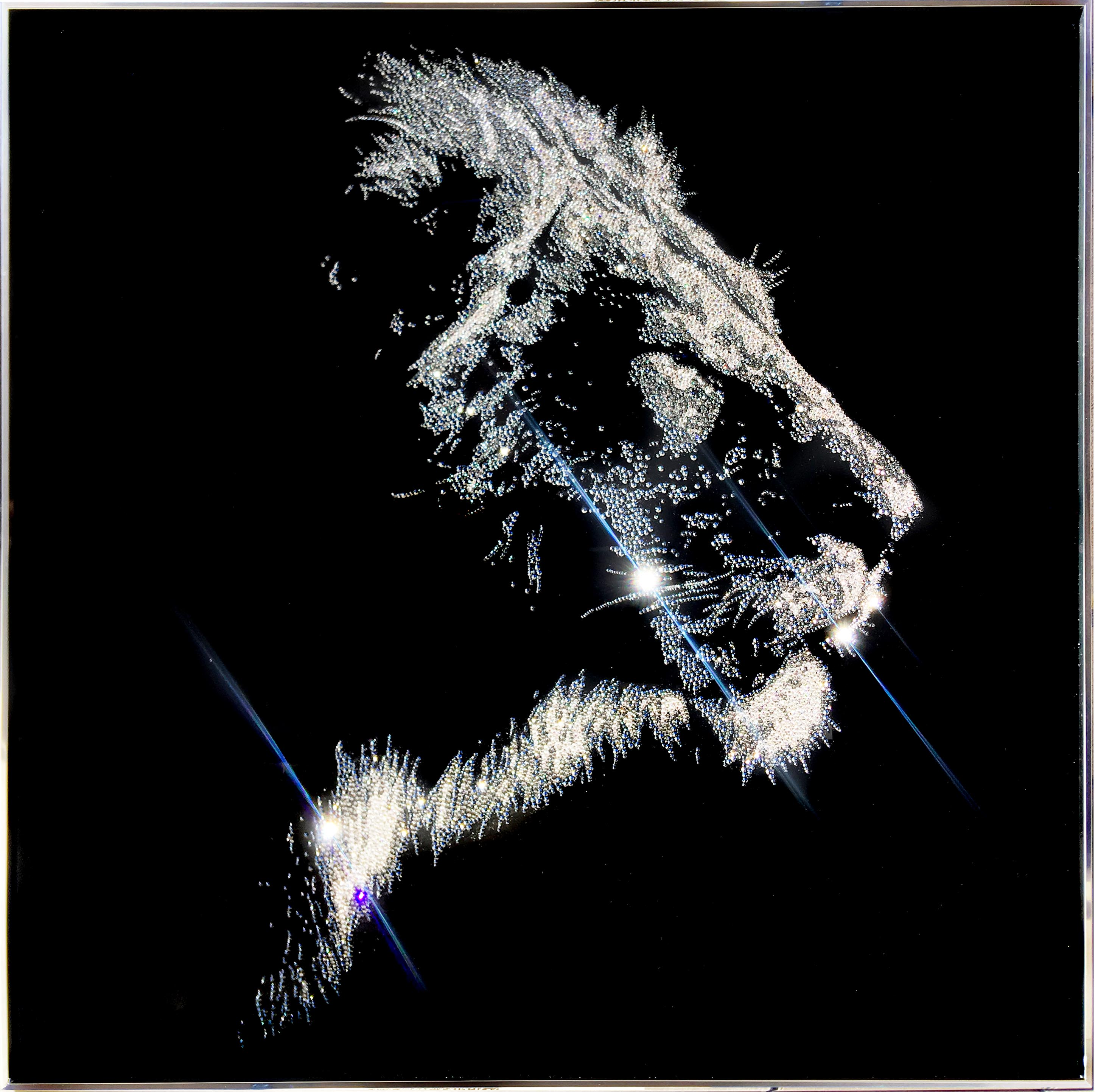 Manes in the wind, 10600 Crystals from Swarovski® su plexiglas, 80x80 cm. 2019