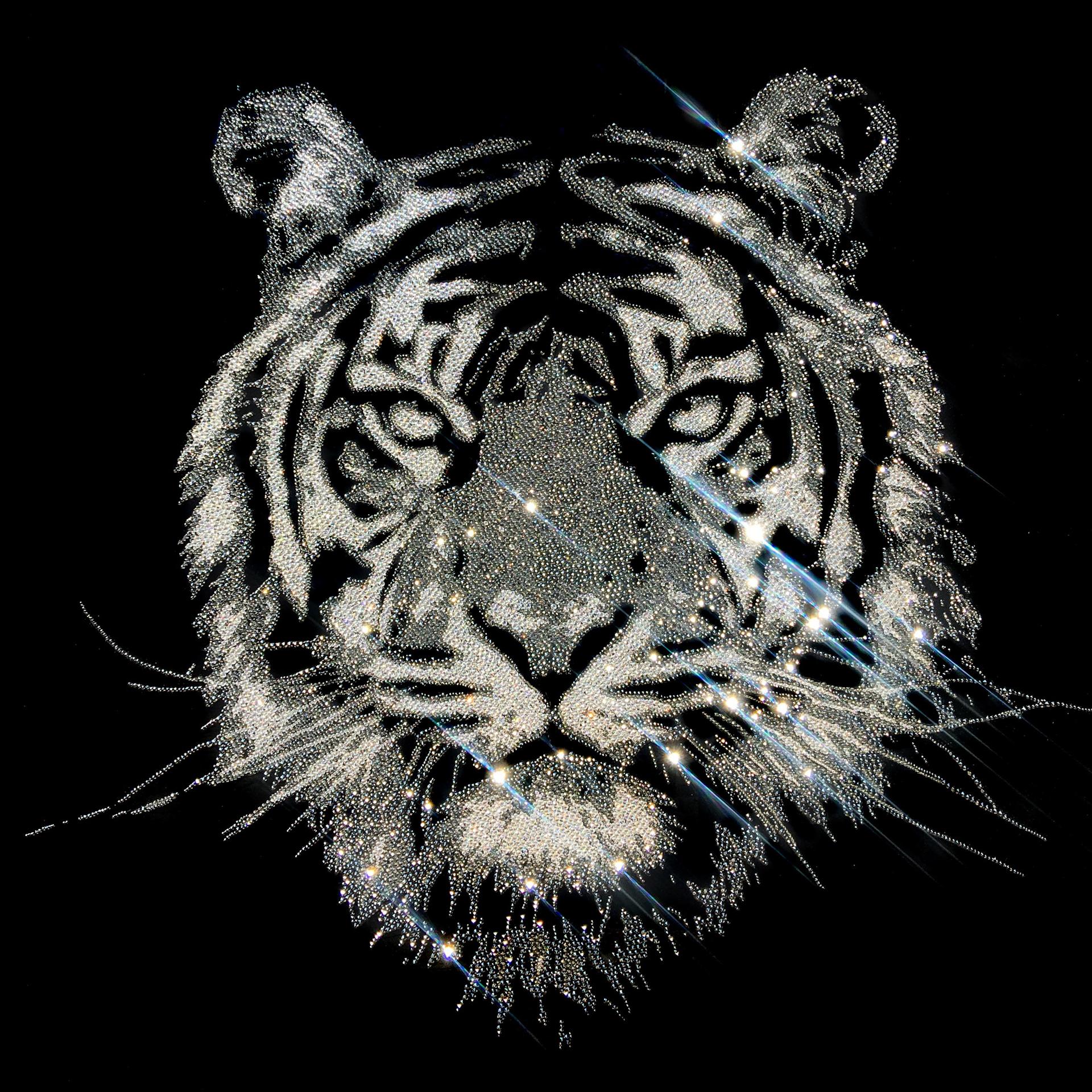 Severe Tiger, 29800 Crystals from Swarovski®, plexiglas, 80x80 cm. 2018