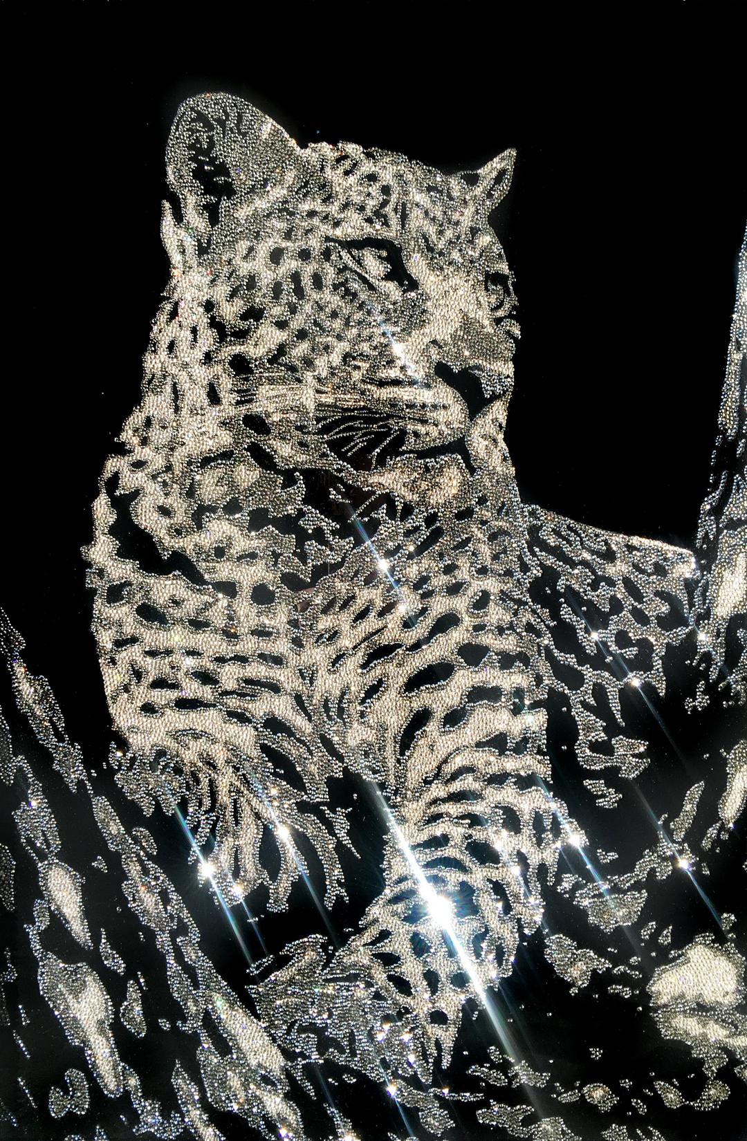 Obsession, 37400 Crystals from Swarovski® su plexiglass, 105x70 cm. 2017