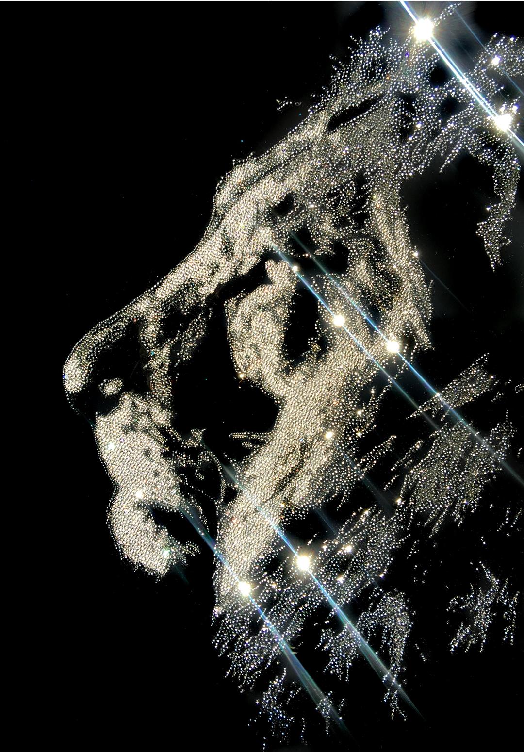 Thinking About You, 20300 Crystals from Swarovski® su plexiglass, 85x60 cm. 2017